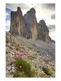 Tre Cime di Lavaredo, Sexten Dolomites, Province of Bolzano, South Tyrol, Italy Poster