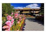 Garden of the Summer Residence of the 14th Dalai Lama, Norbulingka, Lhasa, Tibet, China Prints