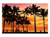 Waikiki Beach, Honolulu, Island of Oahu, Hawaii, USA Prints
