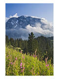 View towards Hoher Goell, Berchtesgadener Land, Upper Bavaria, Bavaria, Germany Prints