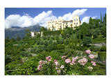 Italian Garden towards water and terraced garden, Trauttmansdorff Castle Gardens, Merano, Italy Posters