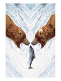 Two Bears For One Fish Prints