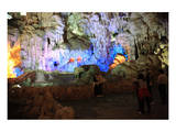 In Hang Dau Go Cave, Hang Dau Go Island in Ha Long Bay, North Vietnam, Quang Ninh, Vietnam Prints
