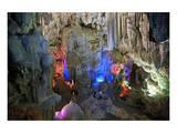 In Hang Dau Go Cave, Hang Dau Go Island in Ha Long Bay, North Vietnam, Quang Ninh, Vietnam Prints