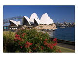 Opera House, Sydney, New South Wales, Australia Print