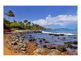 Kanaha Beach Park near Paia, Island of Maui, Hawaii, USA Posters