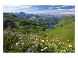 Alpine Meadow on Lake Seealpsee with Hoefats Mountain and Allgaeu Alps Art