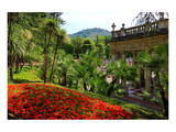 Spa Gardens with View of Montecatini Alto at Montecatini Thermal Baths, Tuscany, Italy Prints