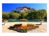 Floral Decorations at the Small Pond with Potala Palace seen from the North Prints