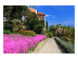 Path at Hanbury Botanic Gardens near Ventimiglia, Province of Imperia, Liguria, Italy Prints