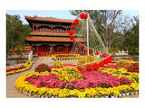 Flower Beds in Jingshan Park, Coal Hill, Beijing, China Prints