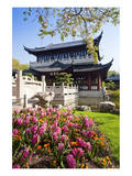 Chinese Tea House in the Chinese Garden, Luisenpark, Mannheim, Baden-Wuerttemberg,Germany Prints