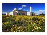 El Abidine Mosque in Carthage, Tunis, Tunisia Posters