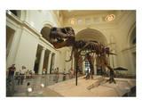 Tyrannosaurus Rex (Sue), Field Museum in Chicago, Illinois, USA - Reprodüksiyon