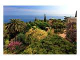 Hanbury Botanic Gardens near Ventimiglia, Province of Imperia, Liguria, Italy Prints