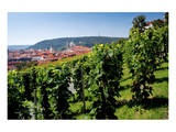 View from St. Wenceslas' Vineyard at the Royal Gardens on Hradcany towards Prague Lesser Town Poster