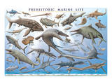 Prehistoric Marine Life Plakat