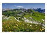 Hiking Trail at Hoefatsblick Station on Nebelhorn Mountain (2224m), Oberstdorf, Germany Prints