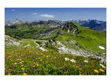 Hiking Trail at Hoefatsblick Station on Nebelhorn Mountain (2224m), Oberstdorf, Germany Prints