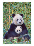 Panda And Baby Pósters