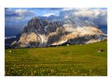 Seiser Alm and Langkofel in Schlern-Rosengarten Nature Park, Dolomites, Trentino-South Tyrol, Italy Prints