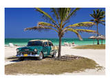 Chevrolet Classic Car under a Palm Tree on the Beach of the Island of Cayo Coco, Cuba Affiches