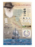 The Genius of Charles Darwin Posters