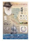 The Genius of Charles Darwin Prints