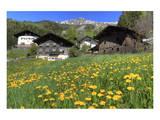 Farmhouses in St. Pankraz, Province of Bolzano, South Tyrol, Italy Print