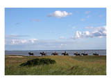 Group of riders in the Braderup Heath, Wenningstedt, Sylt, Schleswig Holstein, Germany Prints