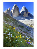 Tre Cime di Lavaredo, Sexten Dolomites, Province of Bolzano, South Tyrol, Italy Prints