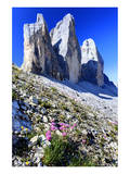 Tre Cime di Lavaredo, Sexten Dolomites, Province of Bolzano, South Tyrol, Italy Print
