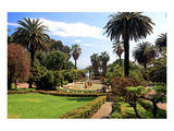 Park of the Villa Nobel in San Remo, Province of Imperia, Liguria, Italy Prints