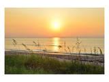 Sunrise on the Beach, Palm Beach, Florida, USA Prints
