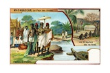 Madagascar, the Trial by Crocodiles and Customary Burial Places, 1908 Giclee Print