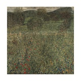 Orchard or Field of Flowers, Ca 1905 Giclee Print by Gustav Klimt