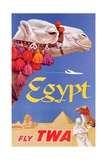 Poster Advertising Trans World Airlines Flights to Egypt, C.1967 Wydruk giclee