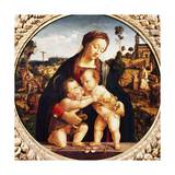 Virgin and Child with St John the Baptist Giclee Print by Piero di Cosimo