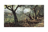Among Olive Trees in Settignano, 1881 Reproduction procédé giclée par Telemaco Signorini