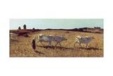 Pastures in Castiglioncello, 1861 Reproduction procédé giclée par Telemaco Signorini