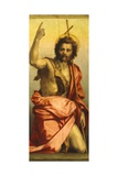 Painting of St John the Baptist Giclee Print by Andrea del Sarto