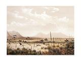 Kangaroo Hunting Near Port Lincoln, Circa 1846 Giclee Print by George French Angas