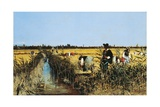 Harvesting Rice in Low Lands of Verona, 1877 Giclee Print by Giacomo Favretto
