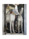 Molossian Dogs, Detail from Meeting Wall, 1465-1474 Giclee Print by Andrea Mantegna
