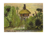 This Is the King of Ashantee, Perched Up So Comically Giclee Print by Ernest Henry Griset