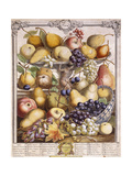 November 1732, Showing Seasonal Apples, Pears, Grapes Etc, 1732 Giclee Print by Pieter Casteels