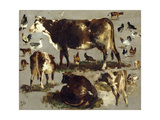 Studies of Cows, Hens, Roosters, a Goose and a Sheep Giclee Print by Rosa Bonheur