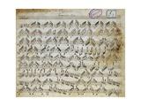 Sheet Music of Capricci, 10, for Violin Solo Lámina giclée por Niccolo Paganini