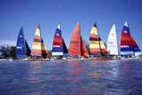 Hobie Cats Anchored and Lined Up Along the Shore, C.1990 Photographic Print