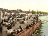 Livestock Market on the The Whitesands in Dumfries, Pub. C.1895 Photographic Print